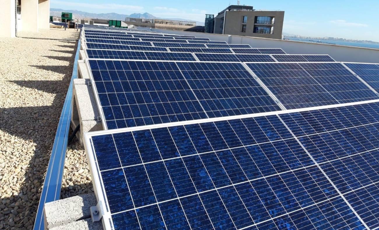 Esquelas.es   GRUPO ASV apuesta por producir energía limpia equivalente a 200 toneladas de CO2 al año